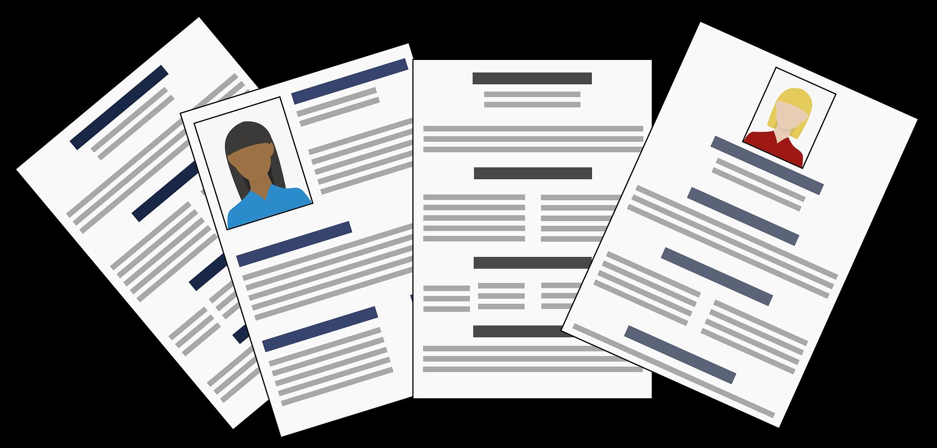 DBIS - CV - Offre d'emploi